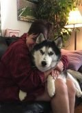 6985304-6458383-stephanie_herfel_pictured_with_her_dog_sierra_in_september_last_-m-2_1543923299826