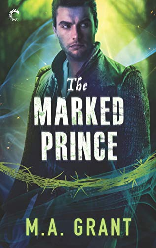 Excellent Review for THE MARKED PRINCE