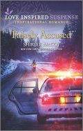 Falsely Accused (FBI: Special Crimes Unit Book 5)
